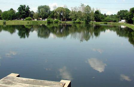 Education for Fish pond fertilization